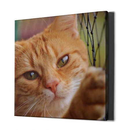 square-photo-canvas-angled-view